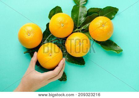 Navel orange fruit holding by hand on green background