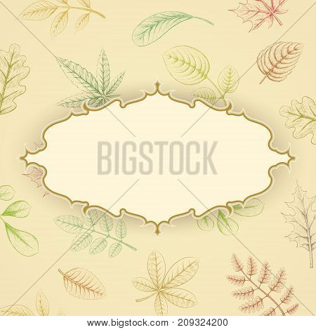 Background of colorful autumn leaves. Hand drawn sketch plants with copy space. Stock vector illustration.