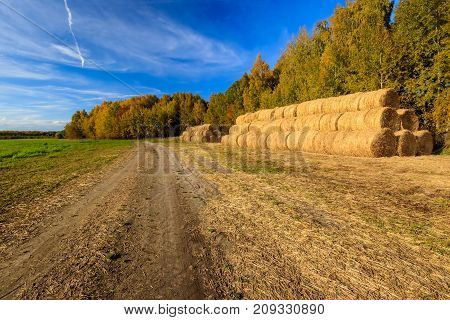 Haystacks On The Field In Autumn Season.