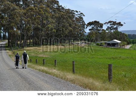 Monks Walking Along The Dirt Road In A Farm, Victoria, Australia