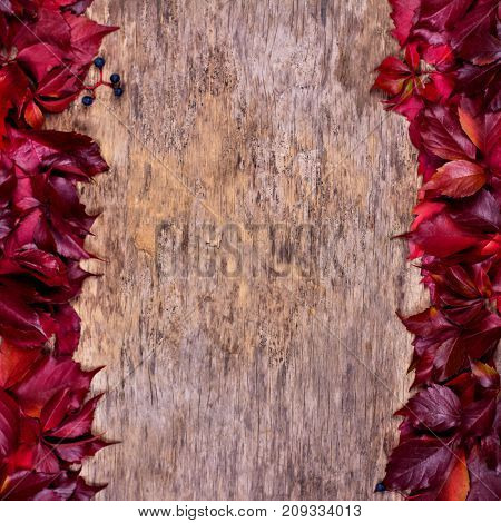 Red Autumn Leaves On A Wooden Background. Frame Of Autumn Leaves.