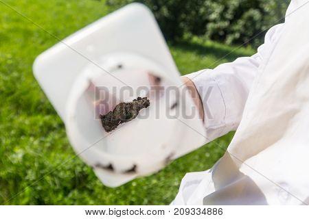 soil samples in a white plastic jar