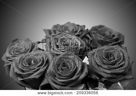 Bouquet of roses with drops of dew black and white