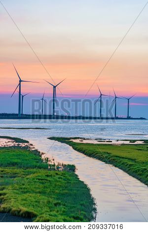 Gaomei Wetlands wind farm at dusk in Taiwan