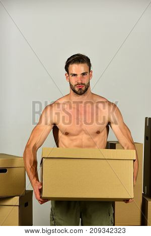 Sexuality And Moving In Concept: Bearded Macho Among Boxes