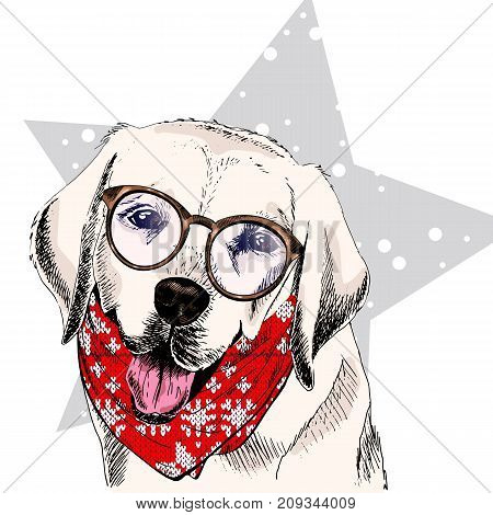 Vector portrait of Labrador retriever dog wearing winter bandana and glasses. Isolated on star snow. Skecthed color illustraion. Christmas Xmas New year. Party decoration promotion greeting card.