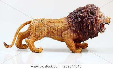 Male toy loin on a white background