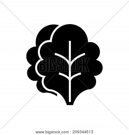 salad icon, illustration, vector sign on isolated background