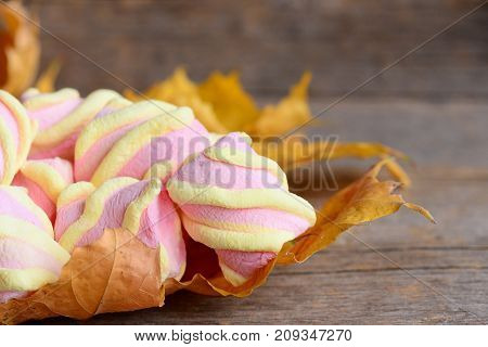 Fluffy yellow and pink marshmallows on yellow autumn leaves and on a vintage wooden table. Sweet marshmallow closeup