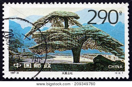 CHINA, PEOPLES REPUBLIC OF - CIRCA 1995: a stamp printed in the China shows Old Pine Looks like a Phoenix, Tree, circa 1995
