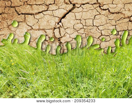 Photo manipulation of dry ground with green grass