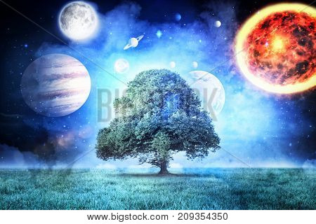 Composite image of solar system against white background against tree in field at night in 3d