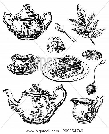 Vector ink hand drawn style tea set with sugar bowl, teapot, cup, saucer and spoon, tea bag, strainer, lemon, tea leaves, slice of cake. Vintage sketch illustration for cafe, restaurant menu, print.