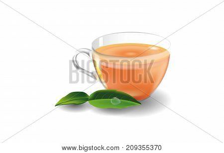 Glass mug with black tea. Green tea leaves. Glass, Orange and green