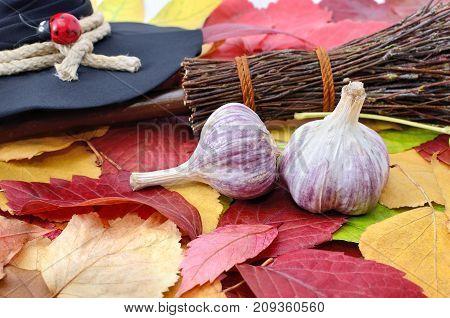 Garlic Against The Evil Spirit On The Autumn Leaves