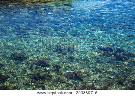Background: The seabed through the clear water.