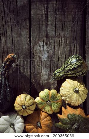 high-angle shot of an assortment of different pumpkins on a rustic wooden table with a blank space on top