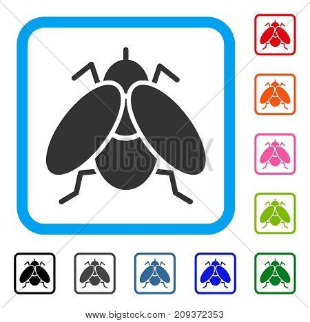 Fly icon. Flat grey pictogram symbol in a light blue rounded frame. Black, gray, green, blue, red, orange color additional versions of Fly vector. Designed for web and app UI.