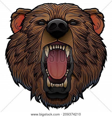roaring girzzly bear head isolated on white vector illustration