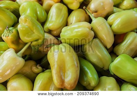 Green bell peppers on a counter in the supermarket. A large number of green peppers in a pile.