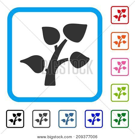 Plant Tree icon. Flat grey pictogram symbol in a light blue rounded frame. Black, gray, green, blue, red, orange color additional versions of Plant Tree vector. Designed for web and software UI.