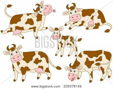 Vector set of cute cartoon cows. Vector cow. Cows vector illustration