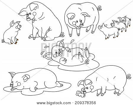 Vector set of black and white cute, cartoon pigs. Vector pig. Pigs vector illustration