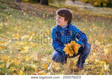 Young boy sitting on autumn park with bouquet of yellow leaves, outdoors