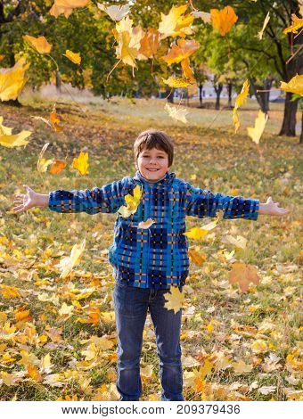 Smiling boy throwing autumn leaves on sunny park, outdoors