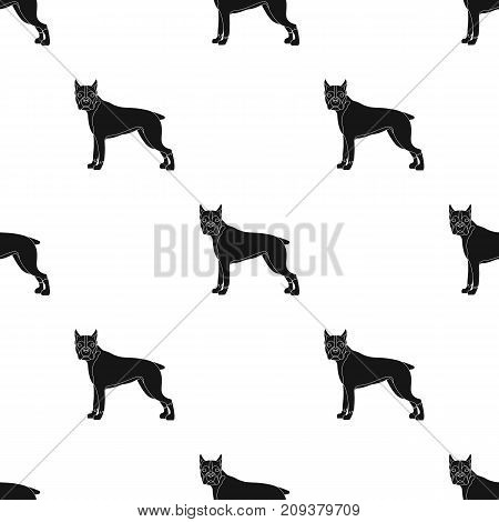Boxer, single icon in black style.Boxer, vector symbol stock illustration .