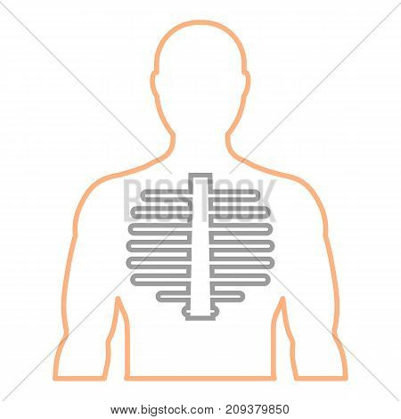Men's contour with the image of the spine. Linear icon. Medicine health diagnosis. Vector illustration.