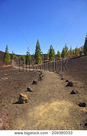 hiking trail on naked volcanic soil Teide National Park Tenerife Canary Islands