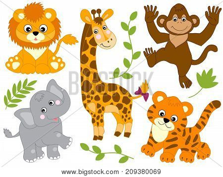 Vector set of safari animals. Set includes tiger, giraffe, monkey, lion and tiger. Vector jungle animals. Safari animals vector illustration