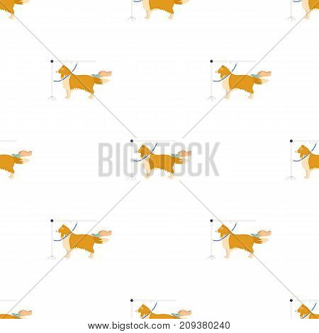 Combing a pet s fur, a dog in a stylish salon. Pet , dog care single icon in cartoon style vector symbol stock illustration .
