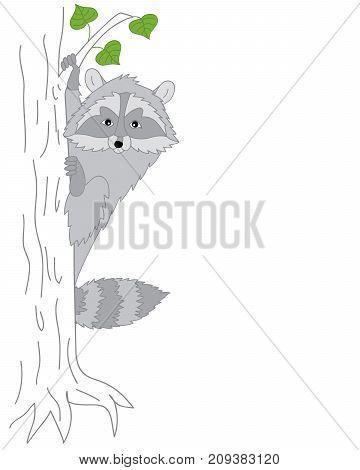 Vector cute cartoon raccoon sitting on tree. Vector raccoon. Raccoon vector illustration