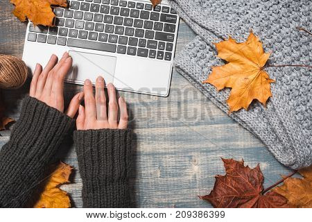 Workspace with yellow and red maple leaves. Desktop with laptop fallen leaves on grey wooden background. Flat lay top view. Woman hands typing