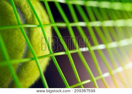 tennis ball on a tennis court, close up