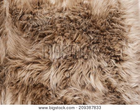 Natural Sheep skin background, natural grey background