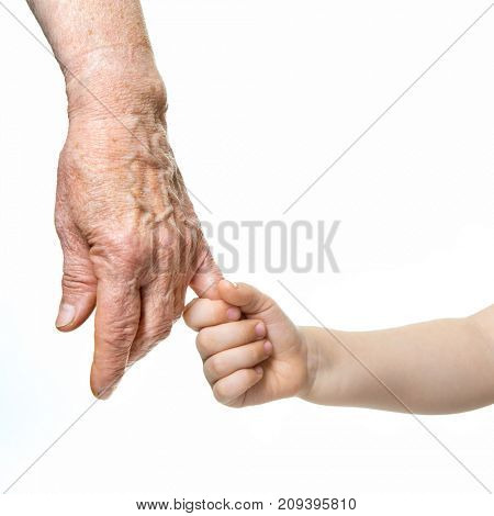 Hands. Grandmother's and grandchild's hands. Elderly and children hands closep, isolated on white background. Family, trust, protecting, care, grandparenting and grandchild concept.