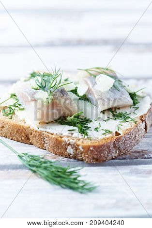 Canapes with cream cheese, salted herring and herbs