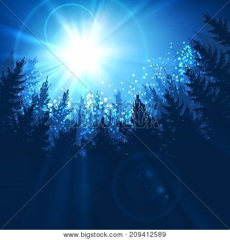 Pine forest background with sun rising in blue colors, vector illustration