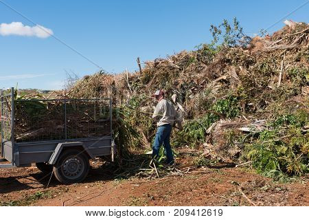 Worker unloading trailer full of garden cuttings and trees to refuse collection site