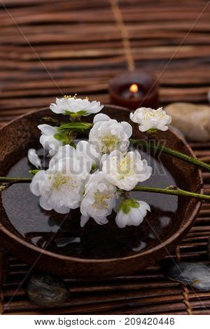 blossom white branch cherry in aroma spa set on mat background
