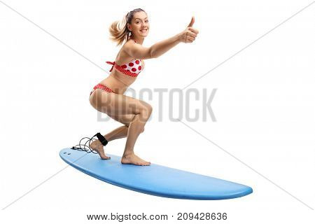 Young woman in a bikini surfing and making a thumb up gesture isolated on white background