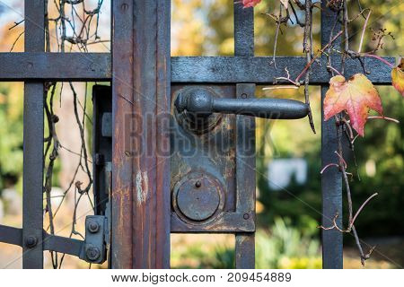 old door handle on iron gate - cemetery entrance gate