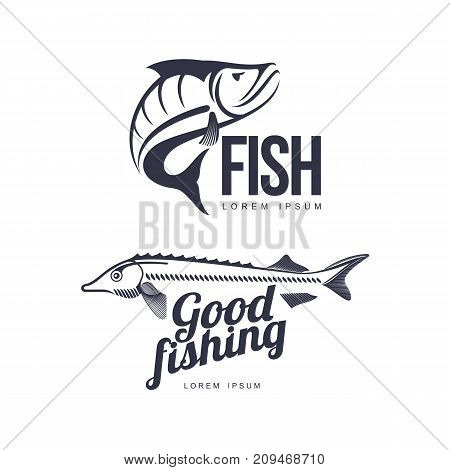 stylized sturgeon good fishing lettering inscription and perch fish icon pictogram set. Brand, logo design. Vector flat silhouette illustration isolated on a white background.
