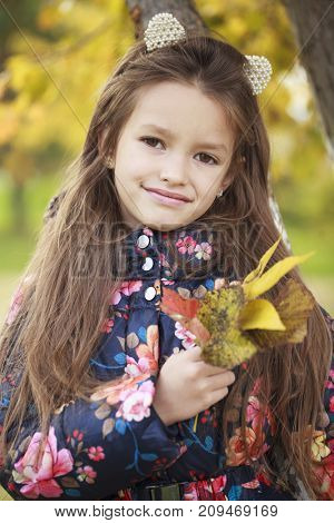 Portrait of a beautiful young brunette little girl, autumn park outdoors