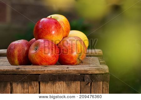 Red Apples on the Old Wooden Crate.