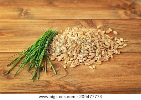 Wheat grass seeds and sprouts on wooden table