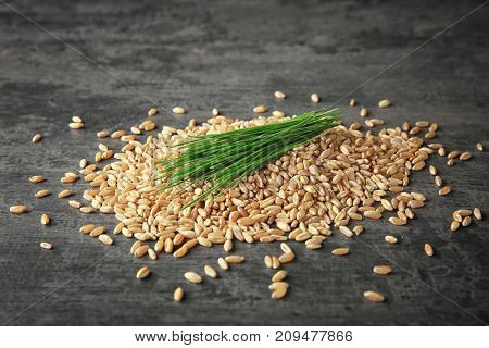 Wheat grass seeds and sprouts on table